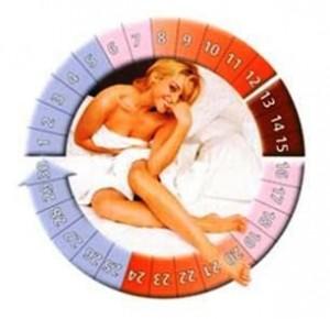 фазы месячного цикла